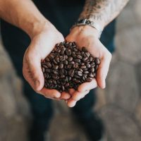 Ultimate Guide to the Lowest Acidity Coffee in 2019