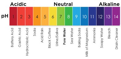 PH Coffee Acidity Levels Chart