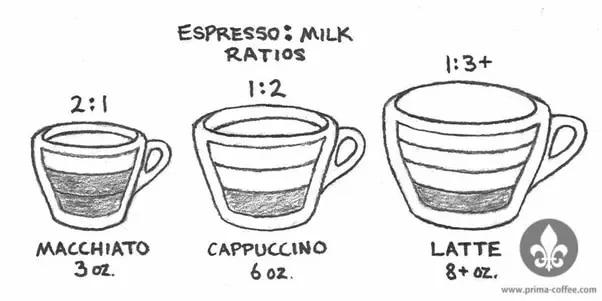 macchiato vs cappuccino vs latte