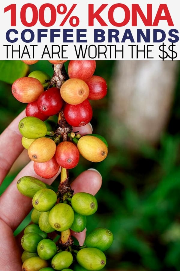 100% kona coffee brands that are worth the money