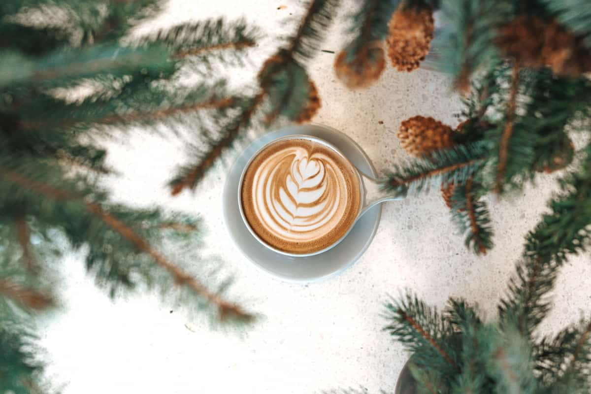 Best Gifts for the Coffee Lover - Coffee Cup surrounded by Pine Branches