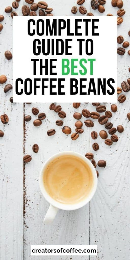 text overlay Guide to the best coffee beans