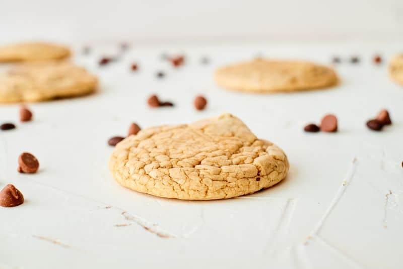 vanilla coffee cookie on bench with chocolate chunks