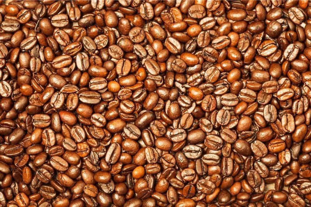 Closeup of Medium Roast coffee beans
