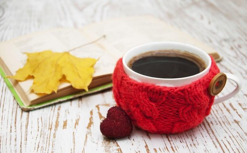 Red knitted cup cozy and book.