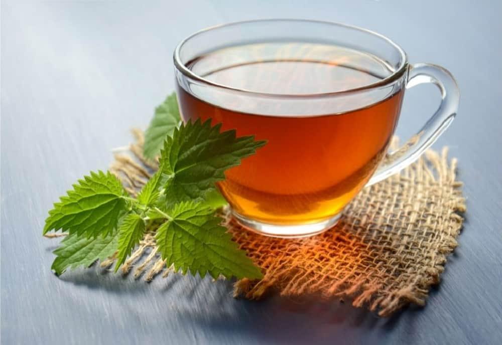Mint majesty caffeine free herbal tea Starbucks